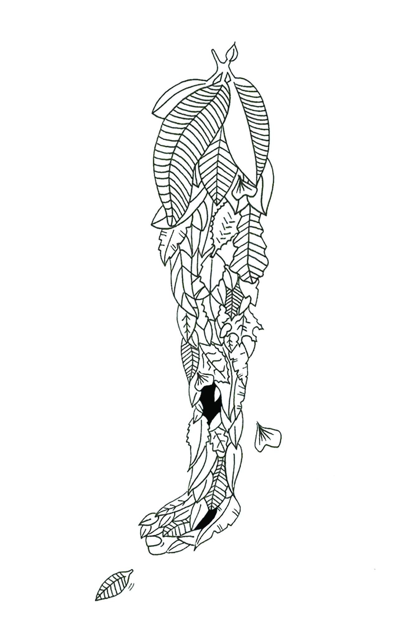 Illustrations Danila Riccio
